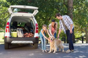 Planning trips for dogs that get motion sick is difficult, but the Longwood staff is here to help ensure your vacation success.