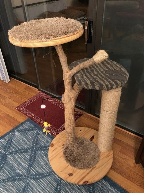 Keeping Cat Content: Part Three: Perches and Scratching Posts Galore
