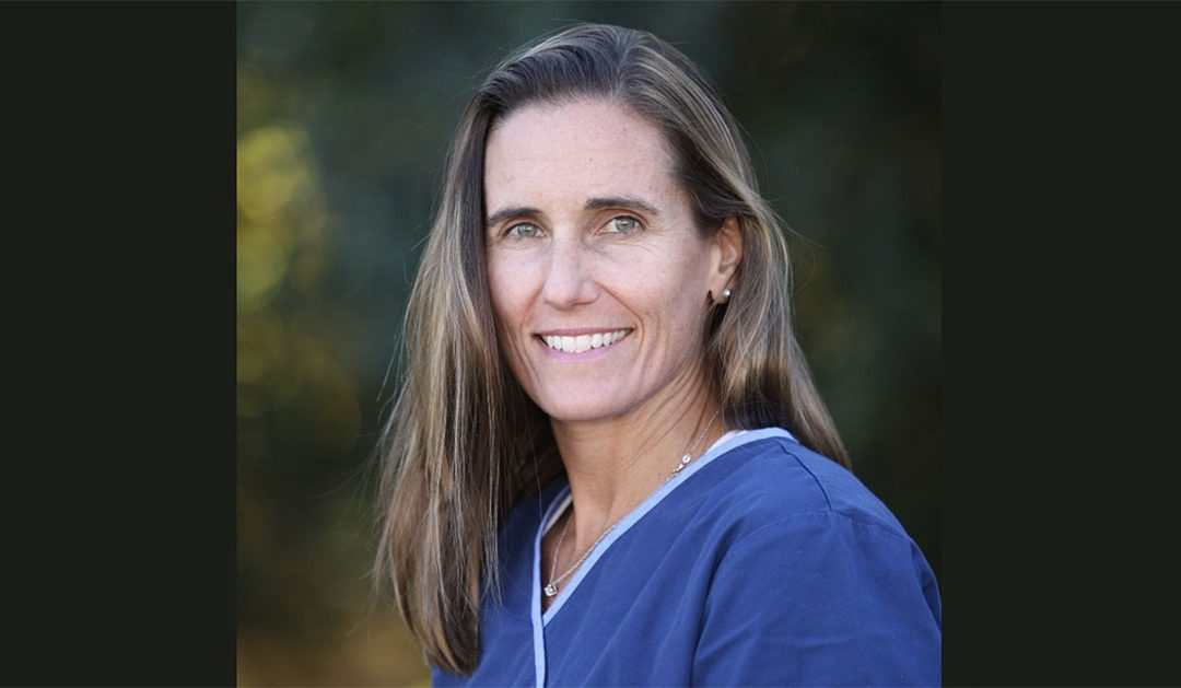 Featured Employee: Dr. Kim Knipe, VMD