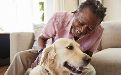 Pet Ownership– A Mutually Beneficial Relationship