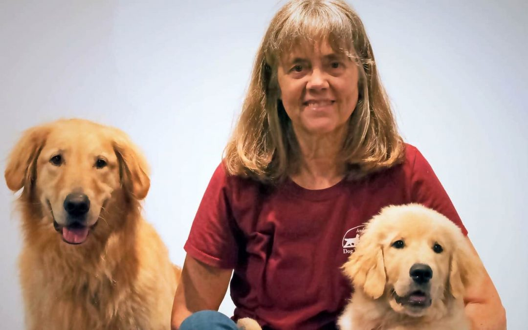 Puppy Training During Social Isolation
