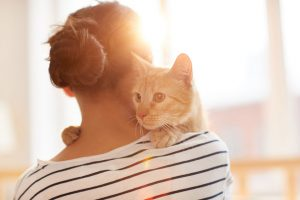 There are many benefits of having a pet from lower stress levels to companionship to even greater heart health!