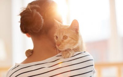 Dogs and Cats Can Help Reduce Stress